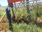 Homem encontrado morto nas margens da BR-163 em Dourados é identificado pela polícia