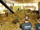 Polícias batem recorde e apreendem quase 200 toneladas de drogas em MS