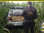 DOF apreende carro roubado com 643 quilos de maconha no porta-malas