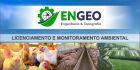 ENGEO Engenharia e Topografia destaca a suinocultura e como utilizar dejetos suínos nos solos