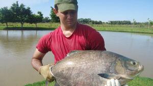 VICENTINA: Pesqueiro 7 Bello serve almoço com pratos típicos do 'Peixe' neste domingo