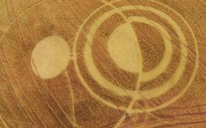 Imagens misteriosas em plantio chocam agricultores de SC