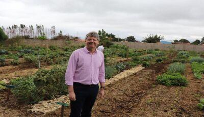 Governo lança plataforma para agricultores familiares de MS venderem on line