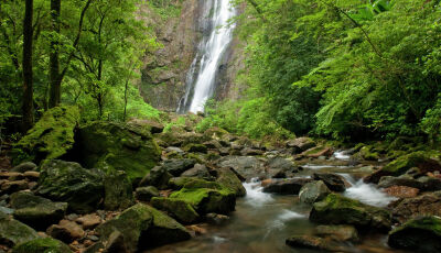 """O Boticário fica """"invisível"""" no Instagram para alertar sobre risco de desaparecimento das florestas"""