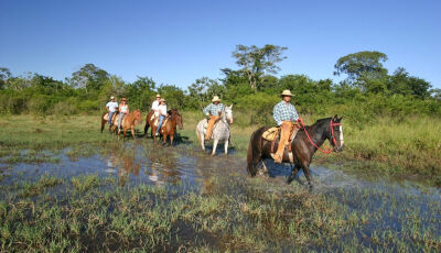 Passeios de cavalo em Bonito - uma verdadeira terapia!