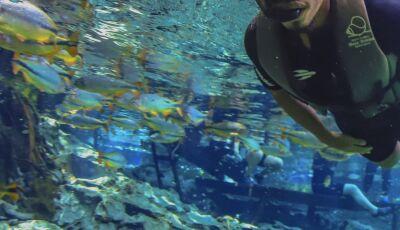 Faça agora sua reserva para o Passeio de Flutuação no Aquário Natural em Bonito (MS)