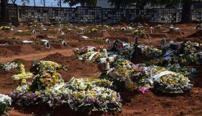 Covid-19: Brasil tem mais 271 óbitos e 15.383 novos casos em 24h