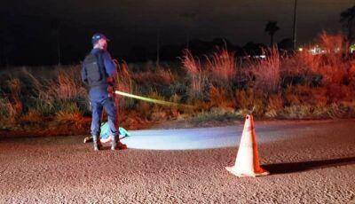 Idoso morre após ser atropelado na MS-141 em Ivinhema