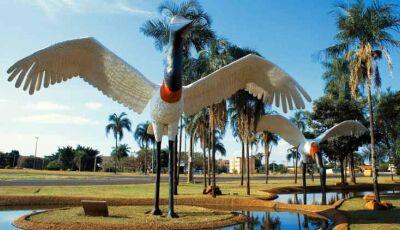 Professor de Fátima do Sul explica sobre a criação de Mato Grosso do Sul