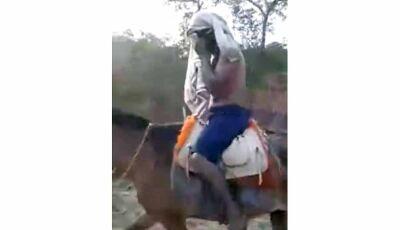 Índio precisa buscar socorro a cavalo após ataque de onça