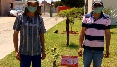 Jateí planta árvores para semear a vida e embelezar a cidade