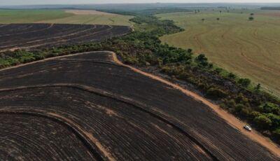 Empresa é multada em R$ 493 mil por incêndio em lavoura de cana e vegetação nativa protegida por lei