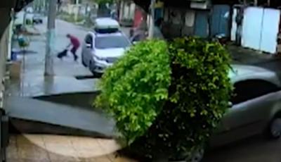 Cachorro salva família durante assalto e leva quatro tiros dos criminosos