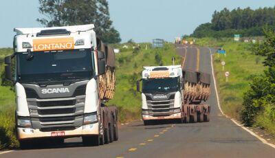 Com mais de 200 Km da rodovia, operação tapa-buraco na MS-040 deve terminar na próxima semana