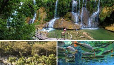Confira 03 passeios incríveis para fazer com a família em Bonito (MS)