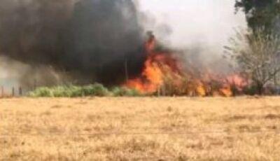 VÍDEO: Curto Circuito causa incêndio na 7ª linha em Glória de Dourados