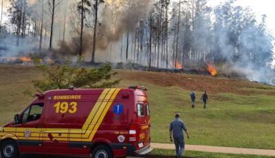 Acidente aéreo mata sócio da Raizen e outras seis pessoas