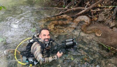 Sucuri gigante 'mostra língua' ao ser flagrada por documentarista da natureza em águas cristalinas
