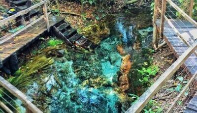 Belezas naturais, aventura e contemplação são os atrativos que a Ceita Curê oferece em Bonito
