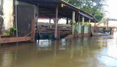 Rio Ivinhema começa a encher e água invade varias casas de ribeirinhos