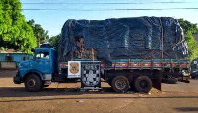 Polícia apreende caminhão recheado de maconha em Dourados