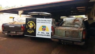 Veículos apreendidos em ação carregavam mais de 5t de maconha em Deodápolis
