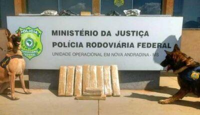 Passageiro de ônibus é preso pela PRF com drogas, duas armas e 100 munições