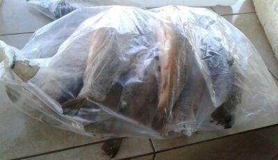 PMA autua 7 pescadores em R$ 6,5 mil por pescado ilegal e apreende 78 kg de peixes em Bonito (MS)