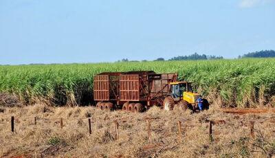 Projeto quer liberar venda direta  de etanol das usinas aos postos