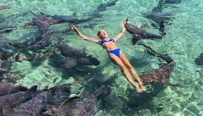 Estudante é mordida por tubarão enquanto posa para foto nas Bahamas