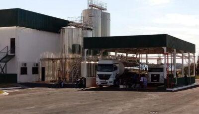 Novo laticínio é inaugurado, deve gerar 120 empregos e produzir até 200 mil litros de leite em Jateí