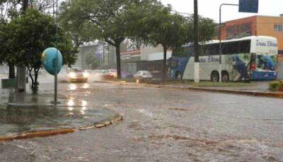 Dourados, Ponta Porã e Juti enfrentam temporal com ventos de até 85 km/h