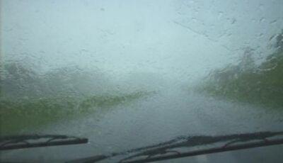Durante chuva, carro sai da pista, bate em árvore e duas pessoas morrem