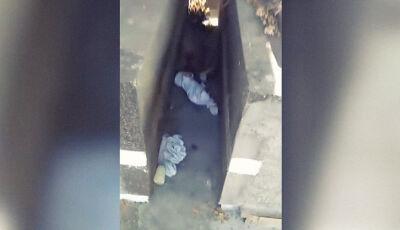 Entre túmulos de um cemitério: Bebê foi encontrado após ser abandonado cruelmente pela mãe