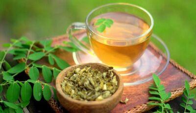 Pouco conhecido, chá de moringa diminui a fome: aprenda a fazer para ter esse efeito