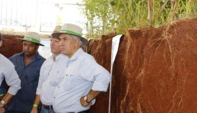 Reinaldo acompanha demonstração de plantio de cereal em diferentes tipos de solo