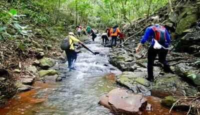 Trilhas de MS: conheça os melhores lugares para se aventurar no contato com a natureza