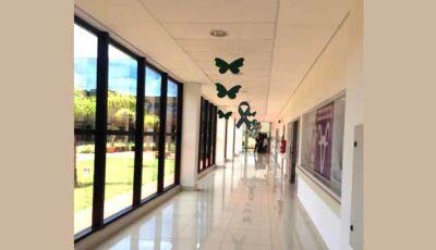 Hospital do Amor oferece 200 vagas por dia para exames preventivos