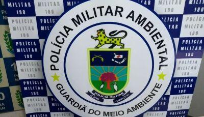 Policiais que já trabalharam em Fátima do Sul, salvam homem de infarto em mercado de Bonito (MS)