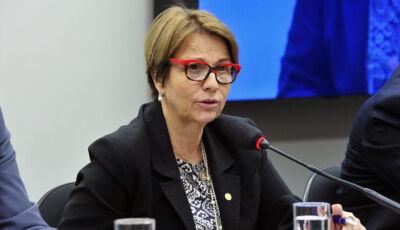 Ministra Tereza Cristina participa do Showtec 2019 que acontece em Maracaju