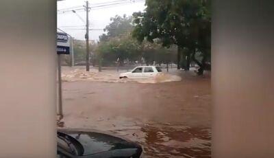Vídeos registram cenas de desespero em toda Campo Grande, ASSISTA