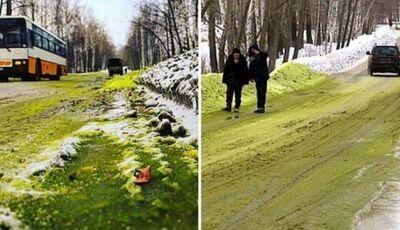 Cidade russa fica coberta de neve verde