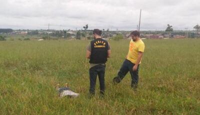 Foragido do semiaberto é encontrado morto em terreno baldio