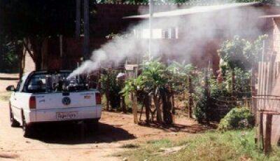 Fátima do Sul e mais 19 cidades do MS com alta incidência de dengue