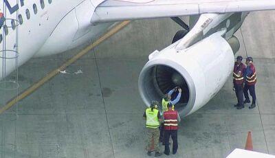 Avião que fatimassulense estava, da meia-volta após piloto relatar pássaro na turbina em Brasília,