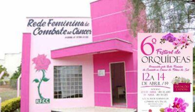 Festival de Orquídeas da RFCC inicia nesta 6ª feira em Fátima do Sul