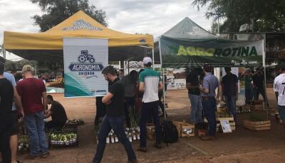 Calouros de Agronomia da UNIGRAN distribuiram mudas de plantas medicinais e condimentares na Praça