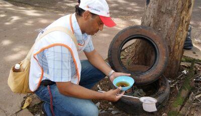 Surto de dengue atinge 36 cidades com 15 mil casos