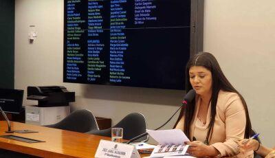 Seminário discute a permanência do Fundeb, garantia cerca de R$ 2,4 bilhões ano Governo e Municípios