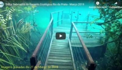 Em Jardim (MS), Atrativo compartilha vídeo de trilha e escadaria submersas; ASSISTA